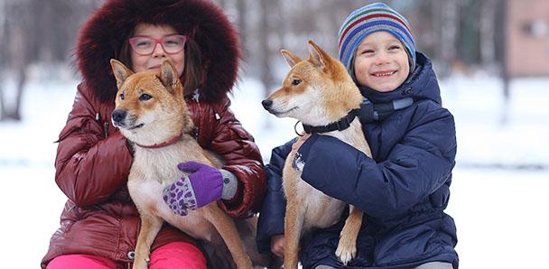 Kanada Kış Kampları – Tamwood Dil Okulu