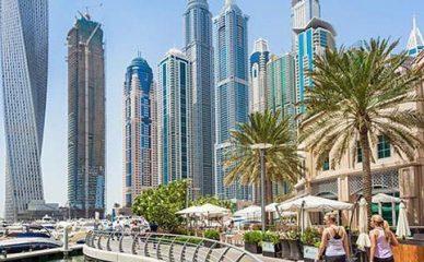Dubai Work & Study